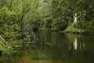 Rzeka Ina